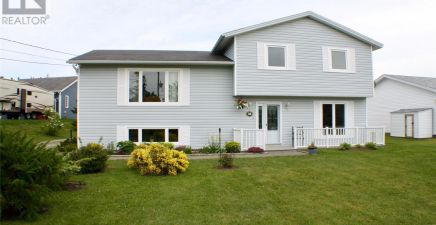 48 Buckingham Drive, Conception Bay South 1219248