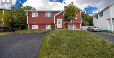 7 Luther Place, Mount Pearl 1220658