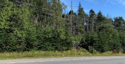 1358-1360 Thorburn Road, Portugal Cove - St. Philips 1220953