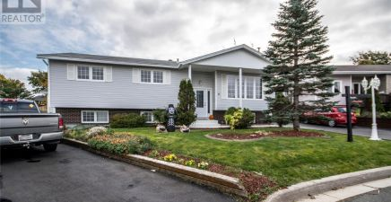 8 Nelson Place, Mount Pearl 1222591