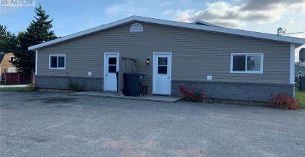 11 Goose Arm Road, Deer Lake 1223589