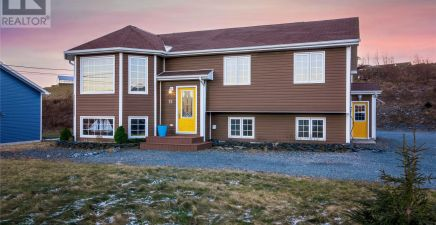 15 Green Hill Drive, Witless Bay 1224226