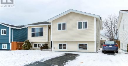 19 Toope Place, Mount Pearl 1224737