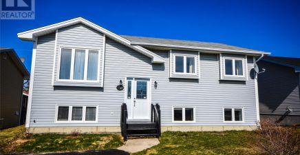 45 Tildacane Place, Conception Bay South 1224984
