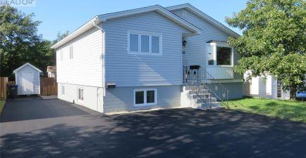14 Ruth Avenue, Mount Pearl 1228131