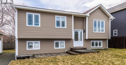 1 Thistles Road, Conception Bay South 1229182