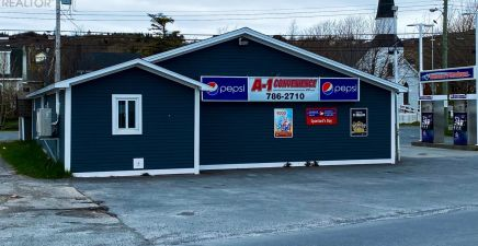 417 Conception Bay Hiwy Highway, Spaniards Bay 1230642