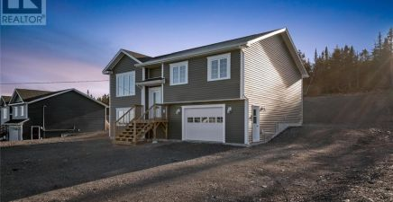 123 Country Path Drive, Witless Bay 1230938