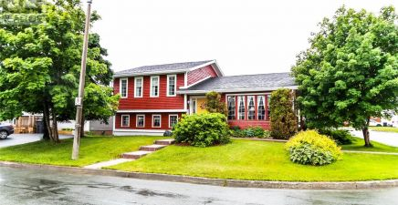 1 Hanrahan Place, Mount Pearl 1232874