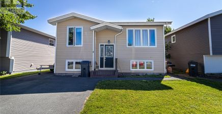 2 Paddon Place, Mount Pearl 1233476