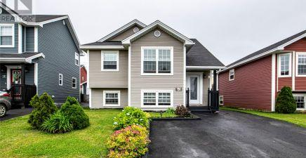 60 Baffin Drive, Mount Pearl 1234137