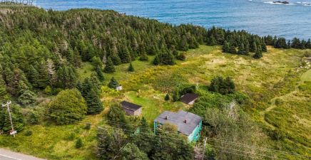 0 Conception Bay Highway N, Ochre Pit Cove 1236596