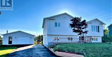 65 Spencers Cove Road, Arnold`s Cove 1236569