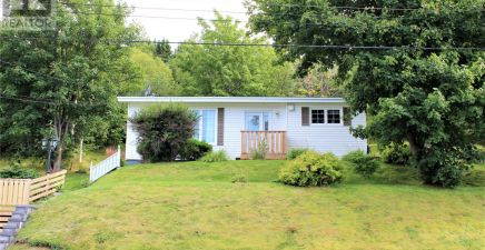 57 Forest Pond Road, Salmon Cove 1236873
