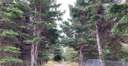 13-19 Witch Hazel Path, Hearts Delight - Islington 1237280