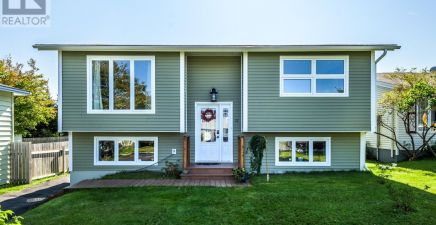 11 Mcmasters Place, Mount Pearl 1237409
