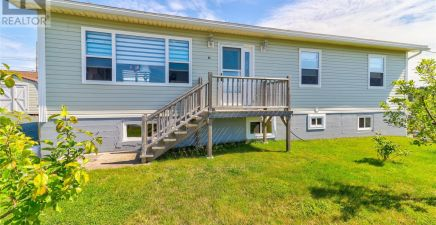 41 Dunns Hill Road, Conception Bay South 1237496