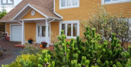 1 Romans Drung, Logy Bay - Outer Cove - Middle Cove 1238207